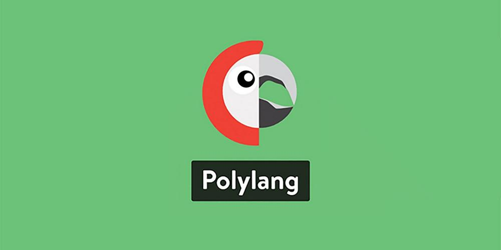 How to Translate a Website Using Polylang Plugin (Step-by-step Guide)